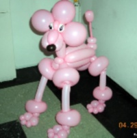 NYC-Balloon-Twisting