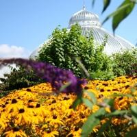 buffalo-and-erie-county-botanical-gardens