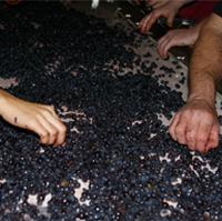 city-winery-new-york