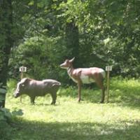 jims-archery-shop-upstate-ny