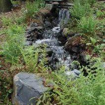 narrows-botanical-garden-brooklyn-new-york