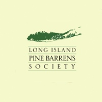 pine-barrens-long-island-bird-watching