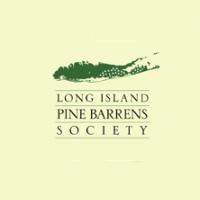 pine-barrens-long-island-bird-watching