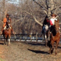 bronx-equestrian-center-horseback-riding-bronx
