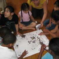 ny-kids-museums