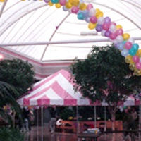 party-tent-rentals-in-upstate-ny