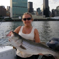 rocket-fishing-charters-in-queens
