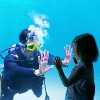 Adventure Aquarium Top 25 Attractions in New Jersey