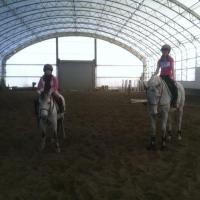 dreaming-tree-farm-horse-riding-upstate-ny