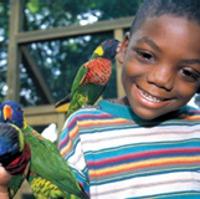 Philadelphia Zoo Day Trip in PA