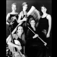 Venus Ensemble Bronx Musicians