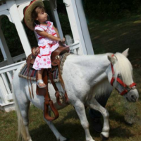 pony-parties-staten-island-ponies-for-your-party