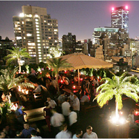 230_fifth_best_rooftop_bars_in_ny