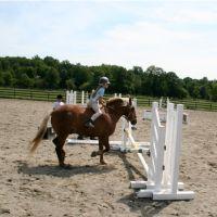 seaton-hackney-stables-ny