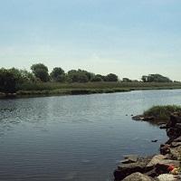 spring-creek-park-ny