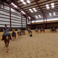 the-new-york-equestrian-center