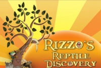 Rizzo's-Wildlife-Discovery-NY-Reptile-Theme-Parties
