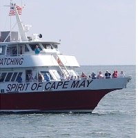 cape-may-whale-watcher-new-jersey-shore