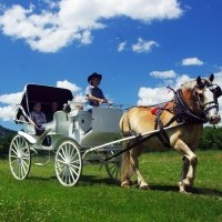 horse-sleigh-farm-new-jersey-attractions