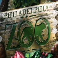 philadelphia-zoo-cool-things-to-do-pa