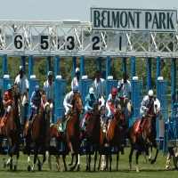 belmont-park-race-track-horse-racing-in-ny