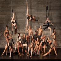 body-and-Pole-pole-dancing-classes-in-ny