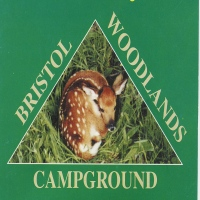 bristol-woodlands-campgrounds-camping-in-ny