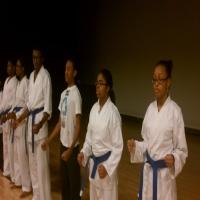 genjoKoan-karate-organization-karate-in-ny