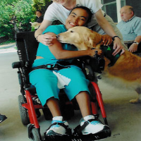 pets uplifting people hero animal assisted therapy ny