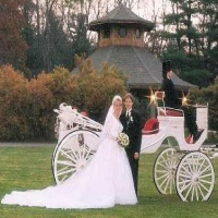 loon-meadow-farm-horse-drawn-carriages-for-weddings-in-ny