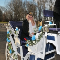 seaton-carriages-and-horse-drawn-wagons-horse-drawn-carriages-for-weddings-in-ny