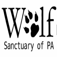 wolf-sanctuary-of-pa-outdoor-adventures-pa