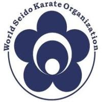world-seido-karate-karate-in-ny