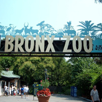 Bronx Zoo in NY Educational Attraction
