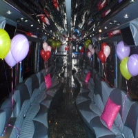 New York Party Bus in NY Party Buses