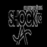 Shockra Dance Studio in NY Belly Dancing Classes
