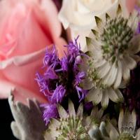 floresta-nyc-wedding-flowers-in-ny
