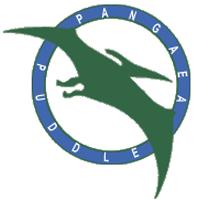 pangaea puddle water skiing ny
