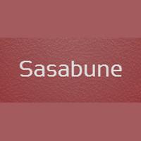 Sasabune Sushi Restaurant in NY