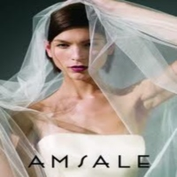 Amsale in NY Wedding Dresses