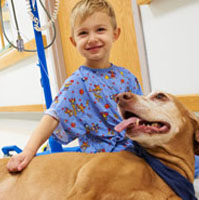 Positive Paws Visiting Pet Program Animal Assisted Therapy in NY