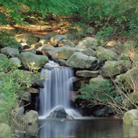 Prospect Park Cool Getaways In NY