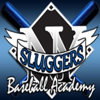 Sluggers Baseball Academy in NY Batting Cages