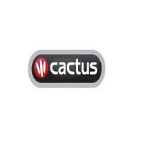cactus worldwide french classes ny