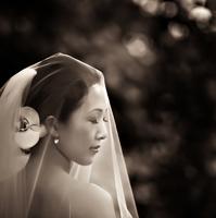 Susan Stripling Wedding Photographers in NY