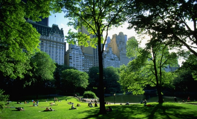 things to do in ny ny tourism On central park must see places